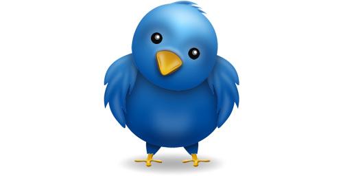 El pájaro de Twitter está triste