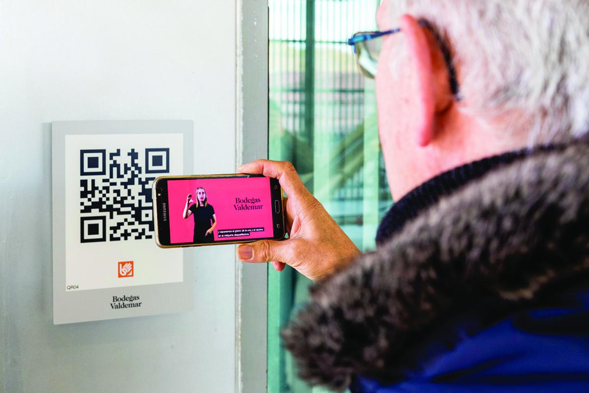 The Bloom Company Participa En La Primera Experiencia Enoturística En España 100% Inclusiva Y Accesible